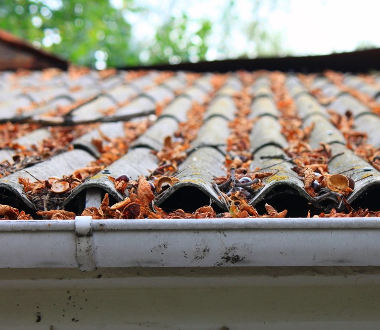 4 Causes for a Leaky Roof