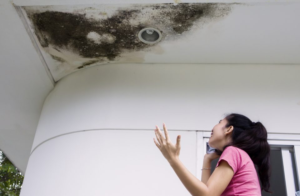 Leaky Roofs Lead To Dangerous Molds